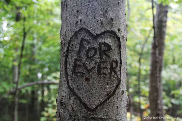 coeur-forever-qc1spire_3816w